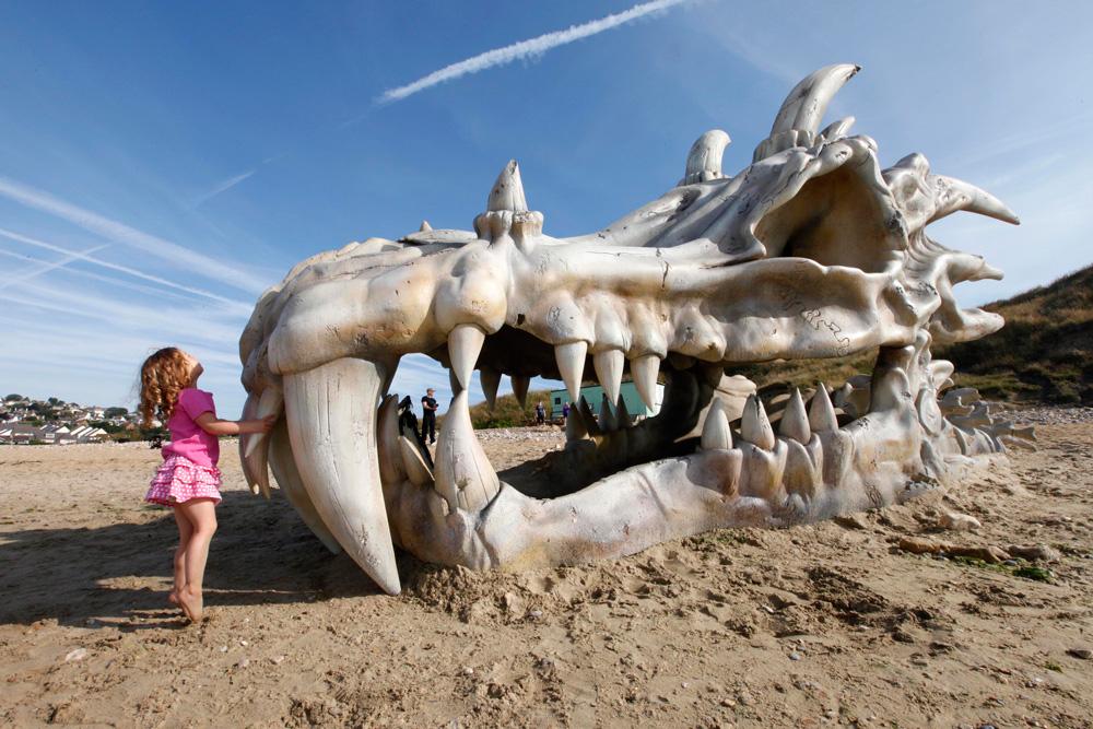 40ft dragon skull blinkbox