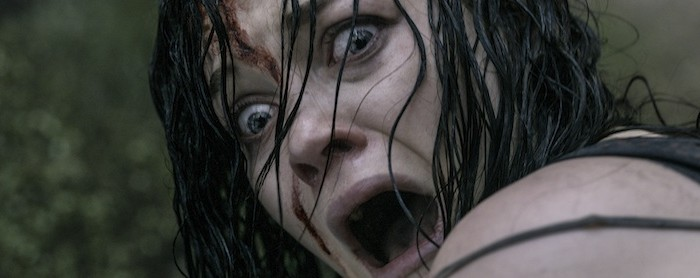 Netflix UK film review: Evil Dead (2013)