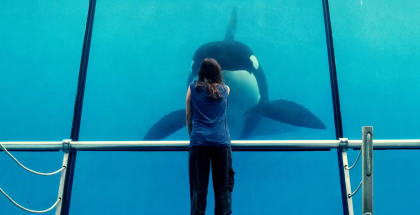 Rust and Bone - LOVEFiLM Instant