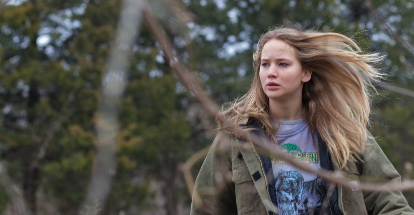 winter's bone netflix film review