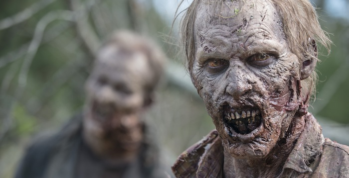 Walker - The Walking Dead _ Season 5, Episode 13 - Photo Credit: Gene Page/AMC