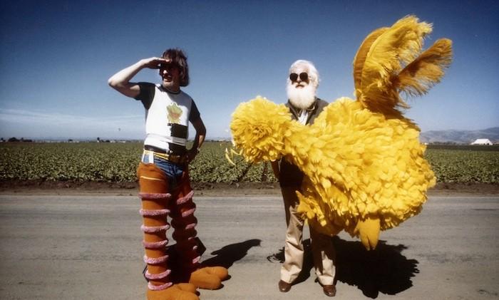 VOD film review: I Am Big Bird