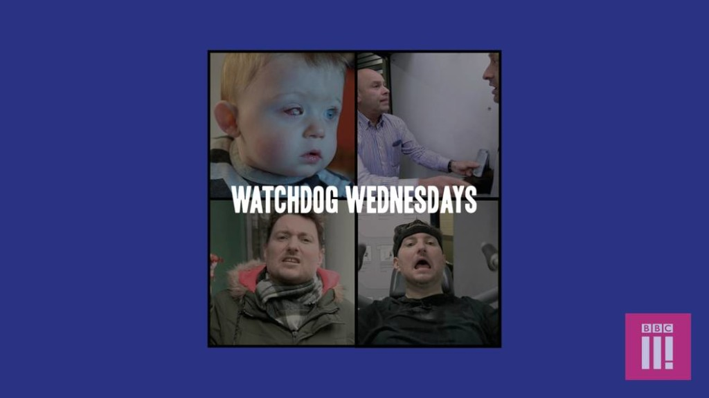 watchdog wednesdays