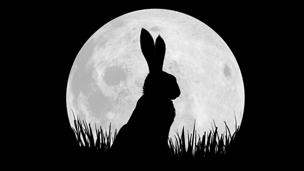 BBC and Netflix team up for Watership Down series
