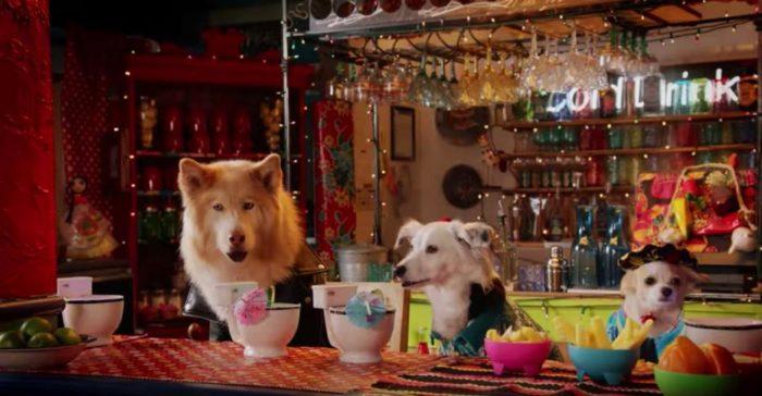 12 Days of Netflix: Puppy Star Christmas