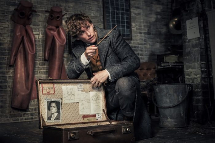VOD film review: Fantastic Beasts: The Crimes of Grindelwald