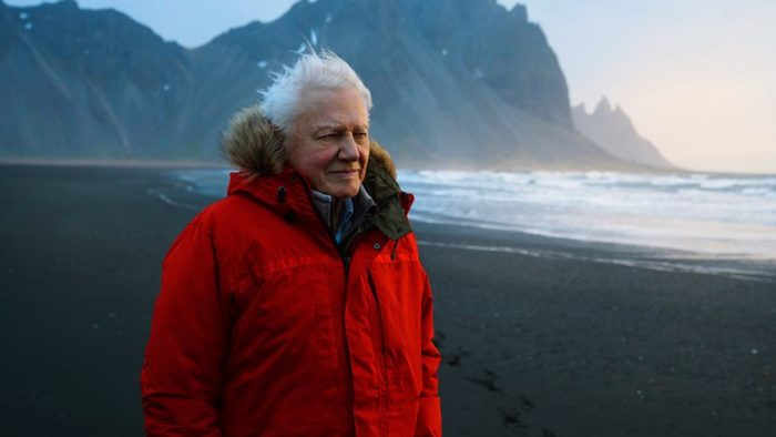 David Attenborough appears at Glastonbury to unveil BBC's Seven Worlds, One Planet