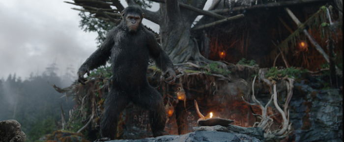 Netflix UK film review: Dawn of the Planet of the Apes