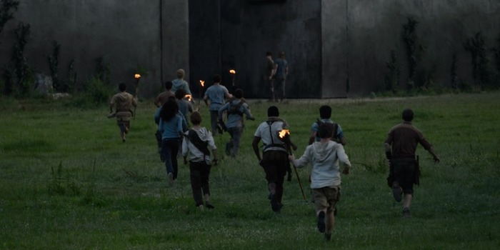 VOD film review: The Maze Runner