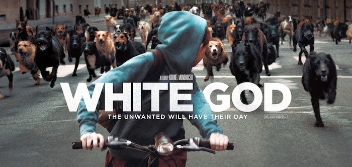 VOD film review: White God