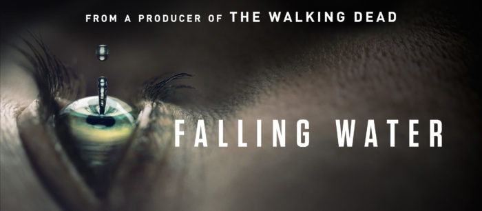 Falling Water to premiere on Amazon on 15th January