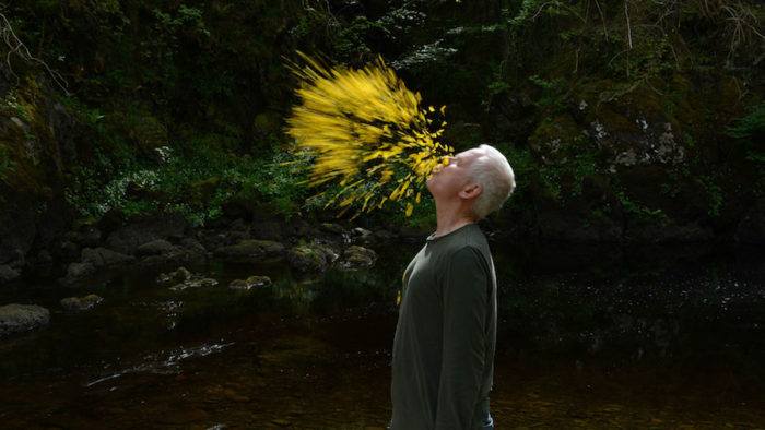 VOD film review: Leaning Into the Wind: Andy Goldsworthy