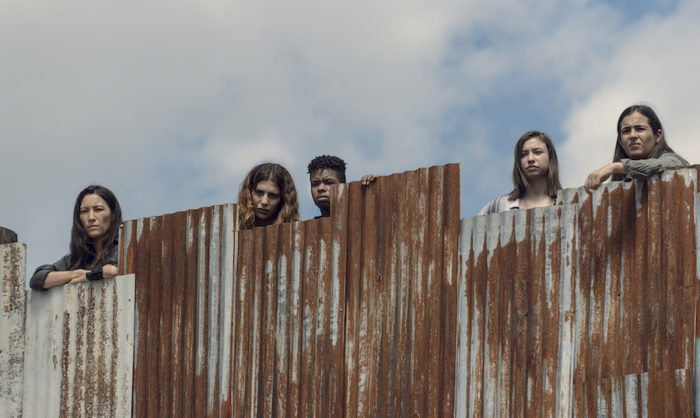 UK TV review: The Walking Dead Season 9, Episode 11 (Bounty)