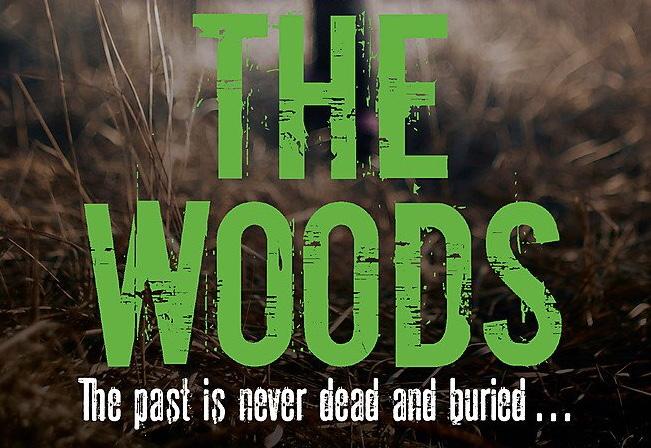 The Woods: Netflix orders Polish series based on Harlan Coben novel