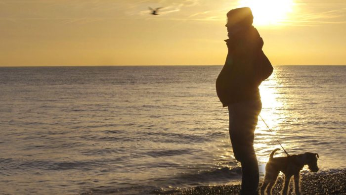 VOD film review: Seahorse: The Dad Who Gave Birth