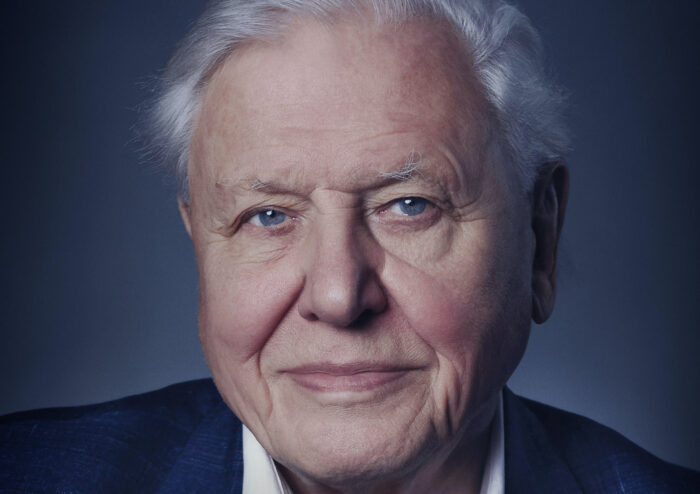 Watch: New trailer for David Attenborough: A Life on Our Planet