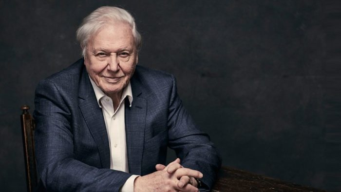 David Attenborough to present BBC One's A Perfect Planet