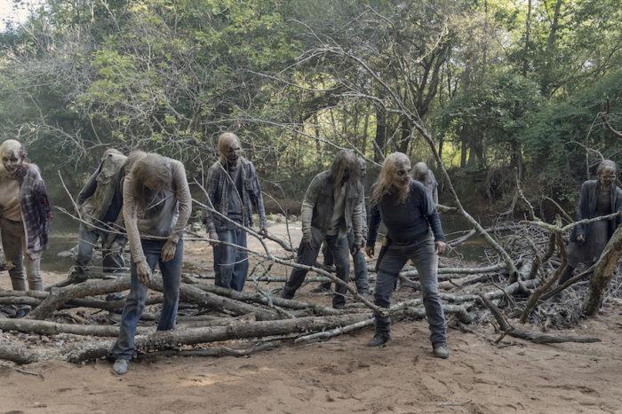The Walking Dead – Season 10, Episode 10 (Stalker)
