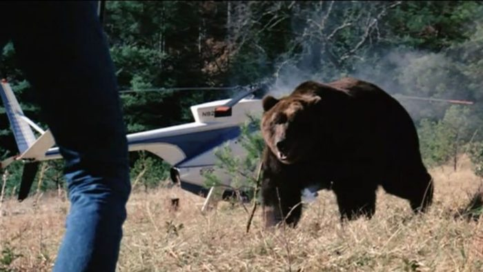 Monster Movie Monday: Grizzly (1976)