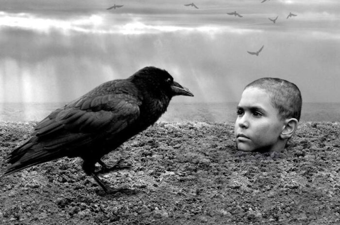 VOD film review: The Painted Bird
