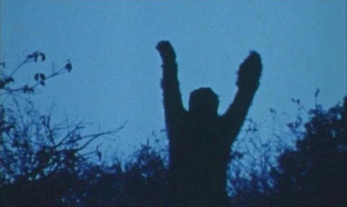 Monster Movie Monday: Sasquatch (1976)