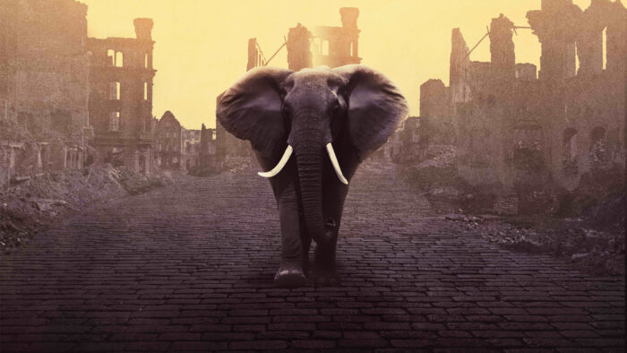Digital theatre review: Elephant in the Garden