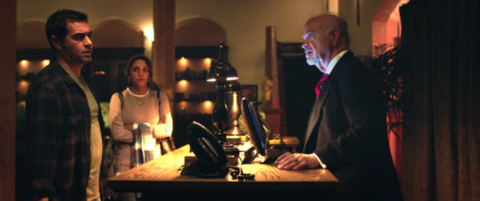 VOD film review: The Night