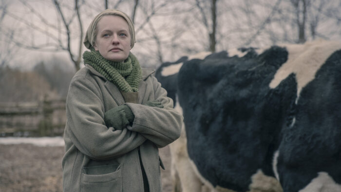 Catch up TV review: The Handmaid's Tale S4, Rick and Morty S5, Harley Quinn S2